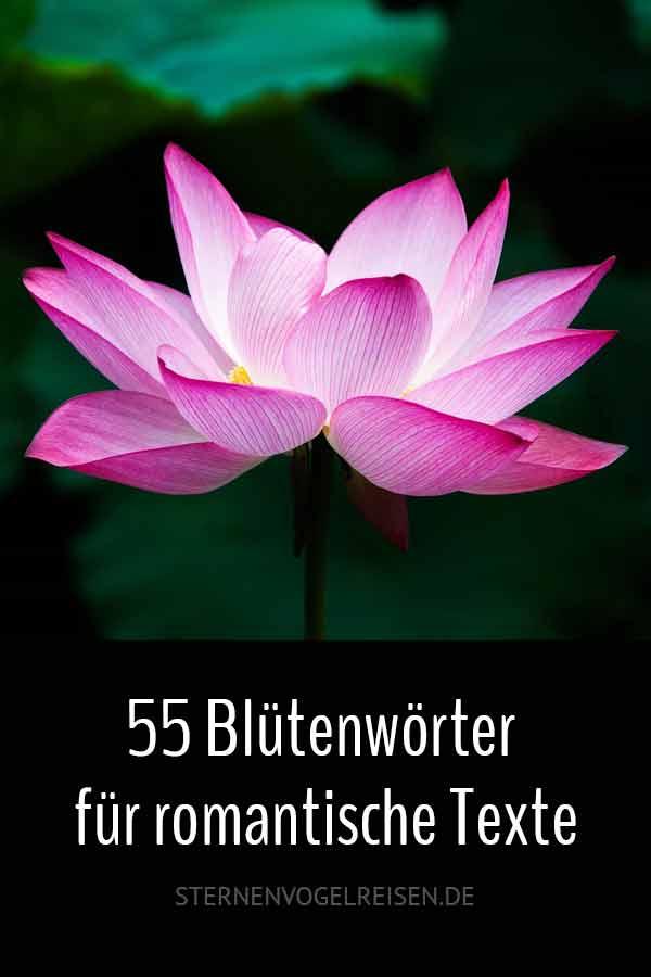 55 Blütenwörter für romantische Texte