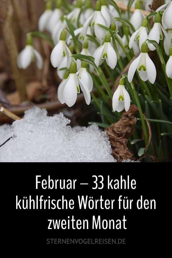 Februar – 33 kahle kühlfrische Wörter für den zweiten Monat