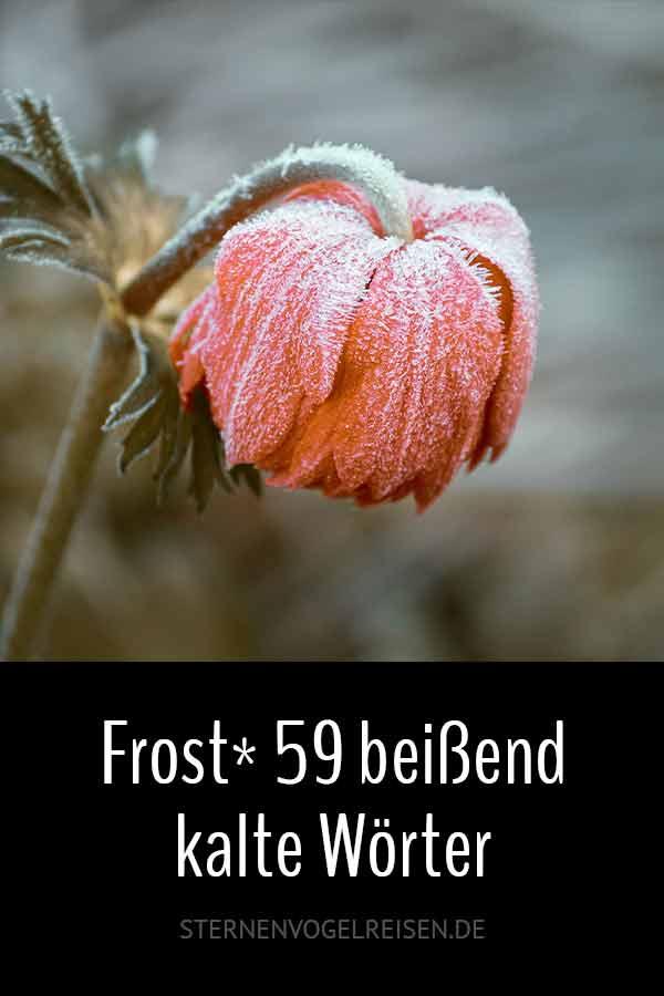 Frost* 59 beißend kalte Wörter