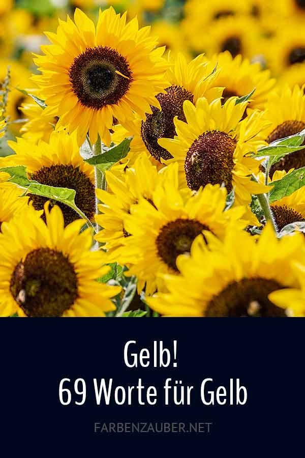 Gelb! 69 Worte für Gelb - Liste der Gelbtöne für Texte