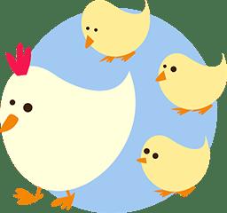 Küken und Huhn