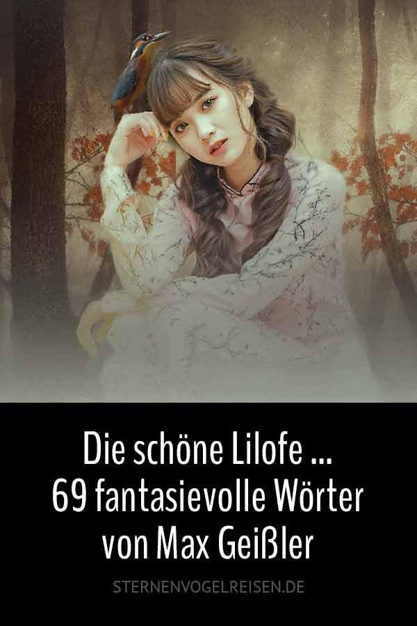 Die schöne Lilofe ... 99 fantasievolle Wörter von Max Geißler