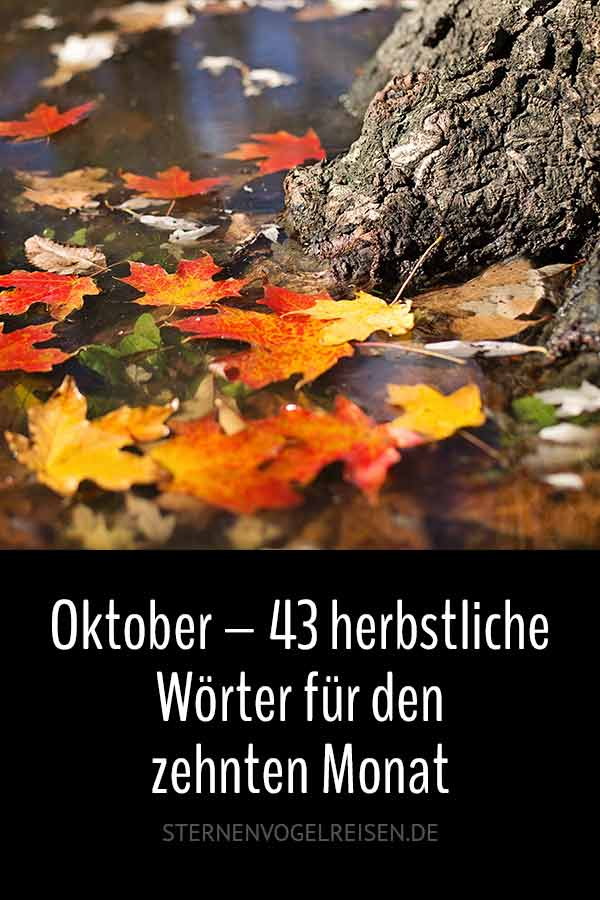 Oktober – 43 herbstliche Wörter für den zehnten Monat