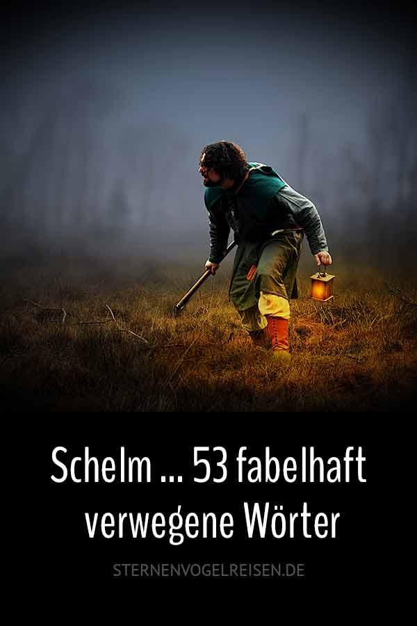 Schelm ... 53 fabelhaft verwegene Wörter