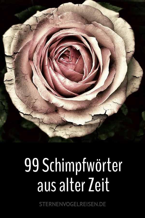 99 Höhepunkte aus dem Deutschen Schimpfwörterlexikon von 1838