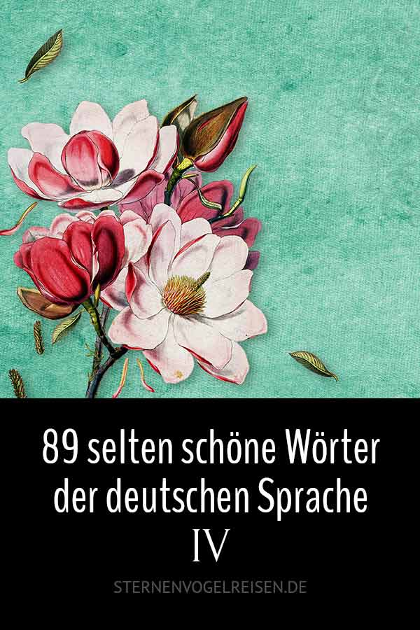 89 selten schöne Wörter und was sie bedeuten – Teil 4