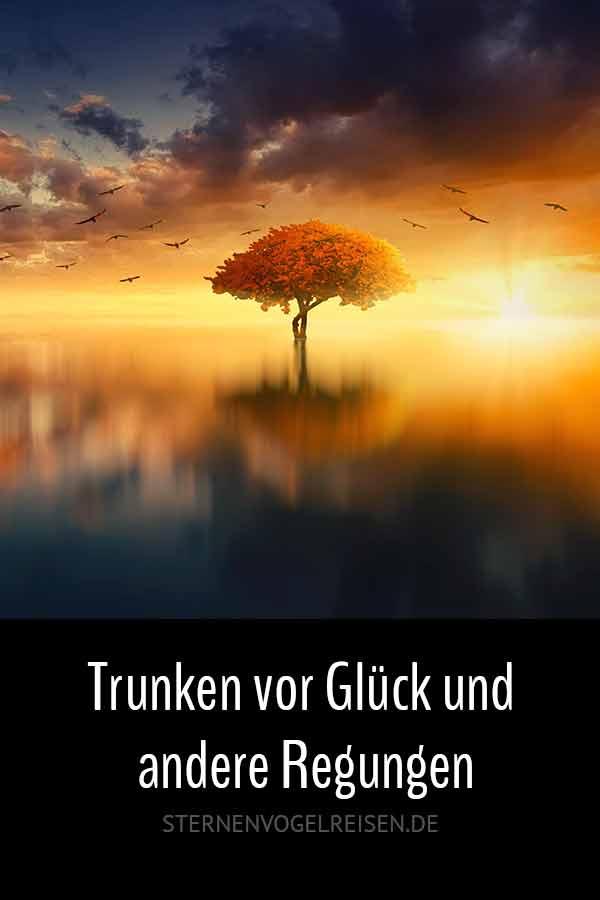 Trunken vor Glück und andere Regungen / 49 schwärmerische Wörter mit *trunken